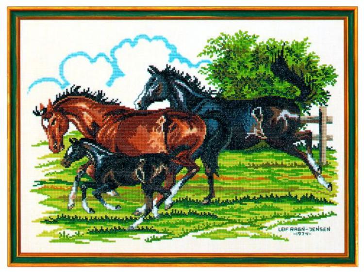 Bilde Hestefamilie