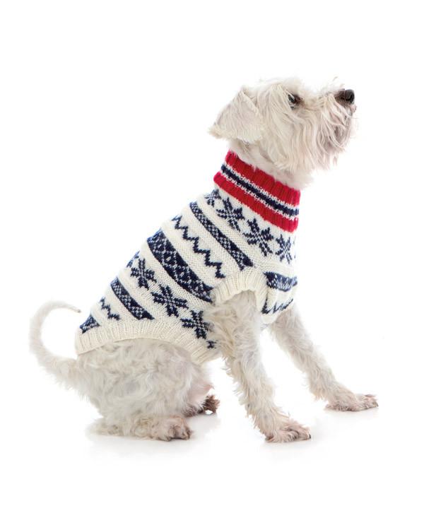 Koiran neule, lipun värit