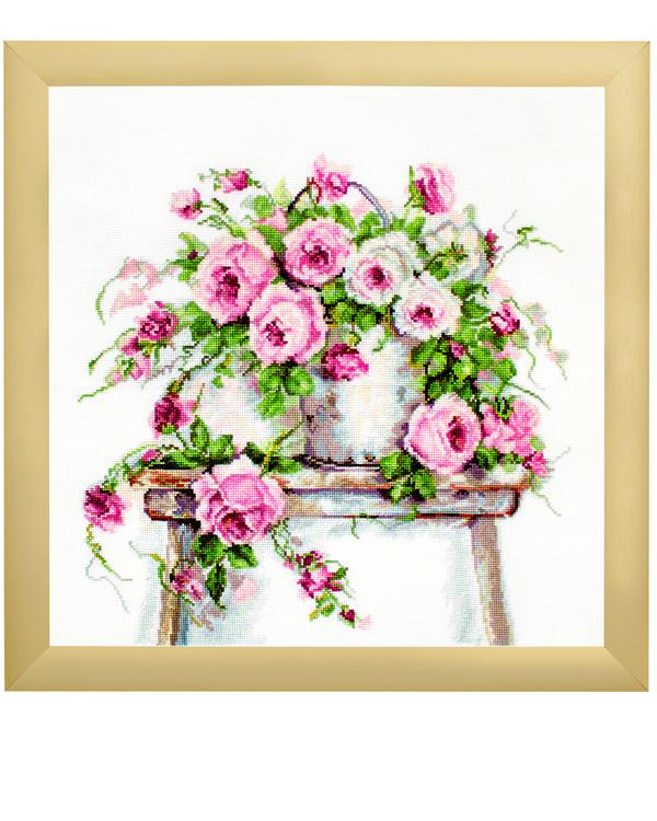Billede Rosa  roser