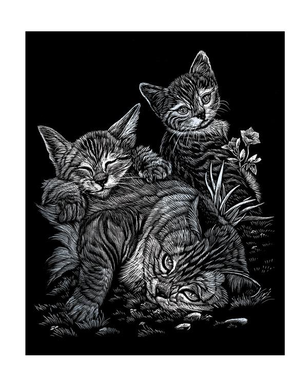 Raaputuskuva Kissanpennut