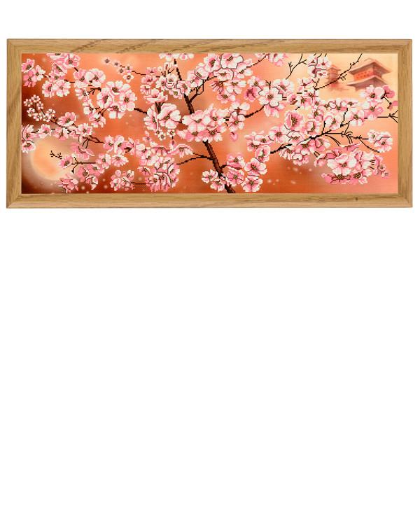 Bilde Rosa blomster