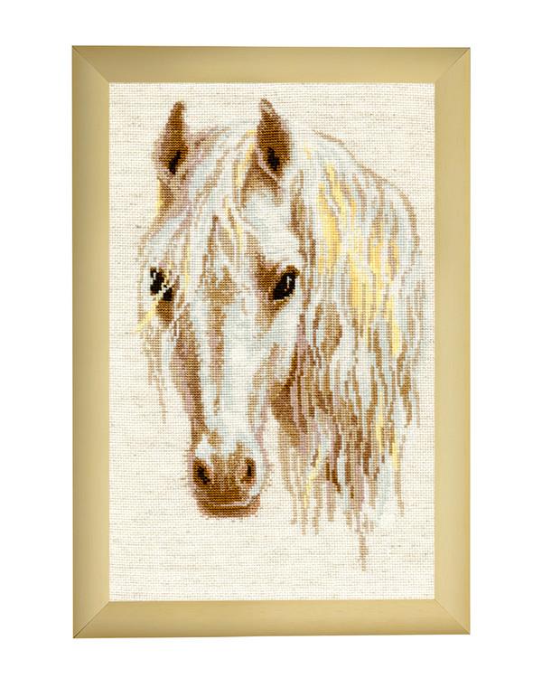 Billede Hest