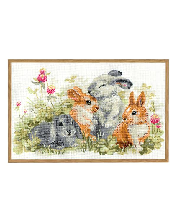 Broderipakke Bilde Kaniner