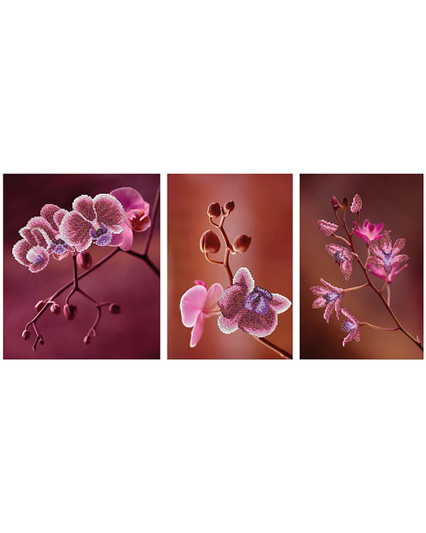 Perlenstickerei Orchideen 3-teilig