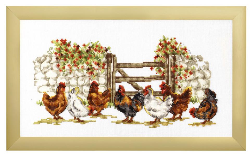 Bild Hühner