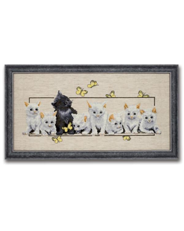 Bilde Kattekillinger aida