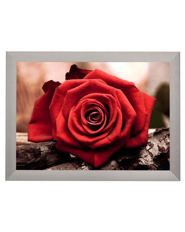 Diamond painting Kjærlighetens blomst