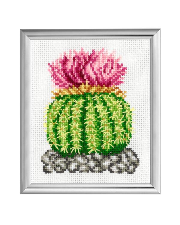 Broderikit Tavla Kaktus Rosa blommor