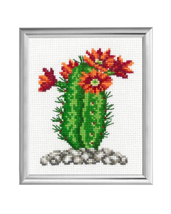 Taulu Kaktus Oranssit kukat