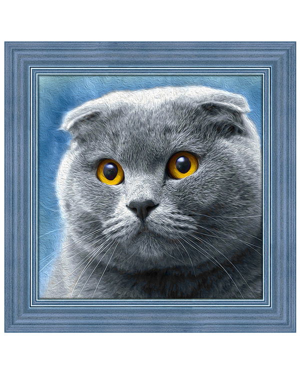 Diamond painting Grå katt