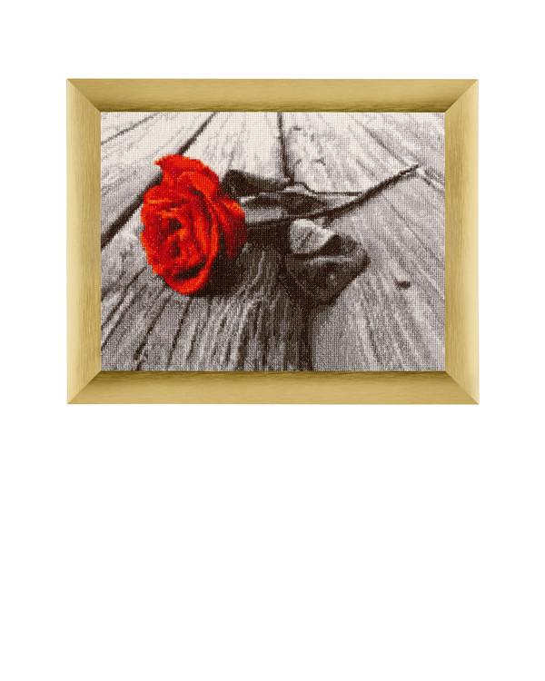 Billede Rød Rose