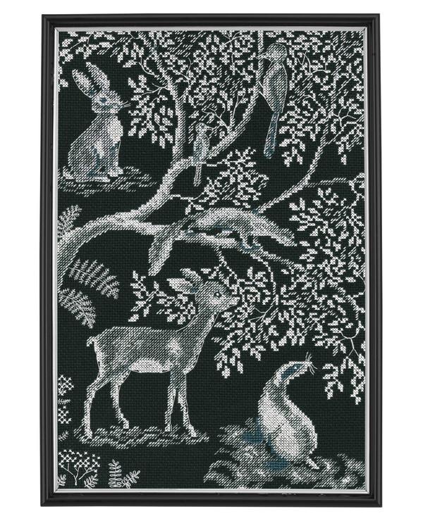Bilde Skogens dyr
