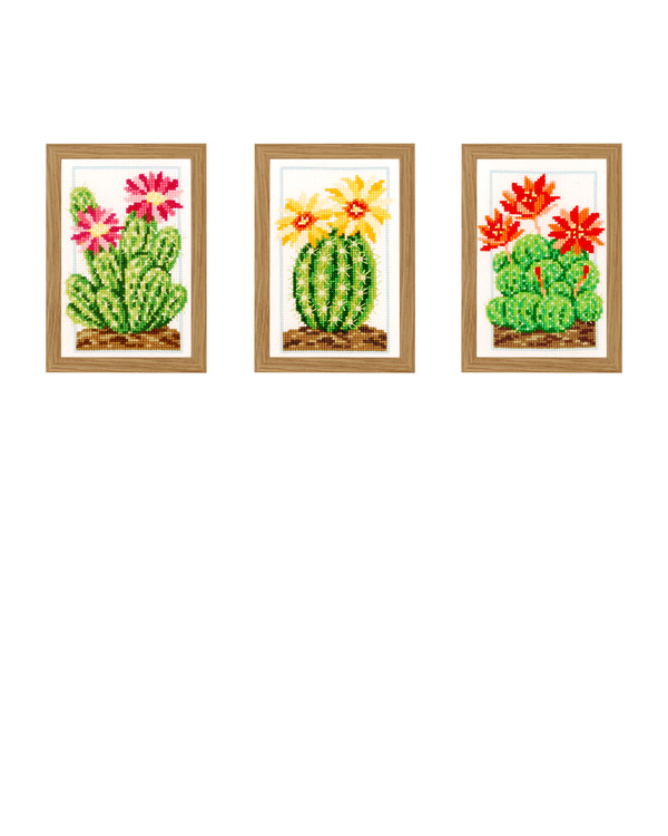 Taulut Kaktukset 3/pak