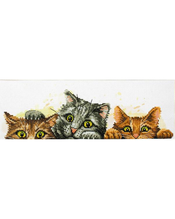 Broderikit Billede Kattekillinger