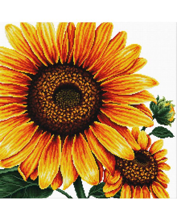 Stickpackung Bild Sonnenblume