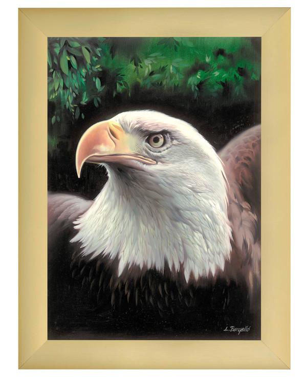 Stramei Eagle uten garn