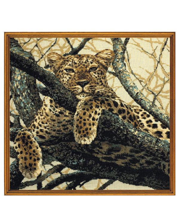 Billede Leopard