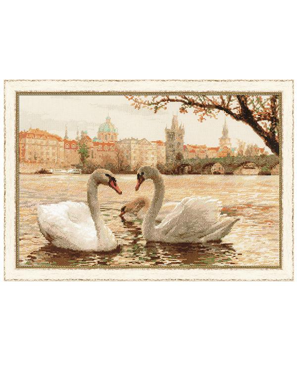 Billede Svaner i Prag