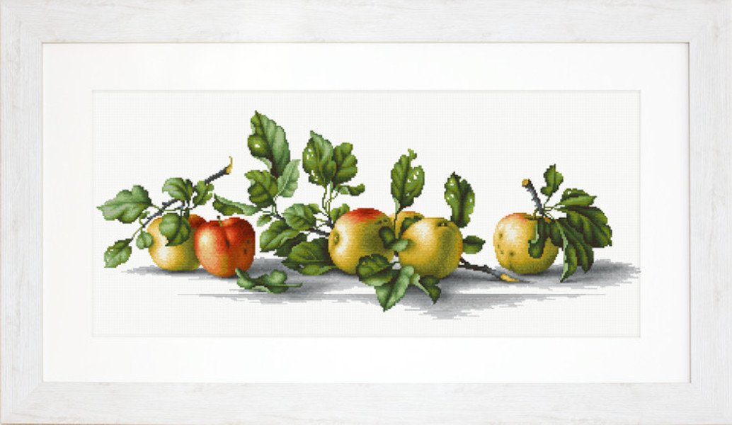 Billede Æbler på rad