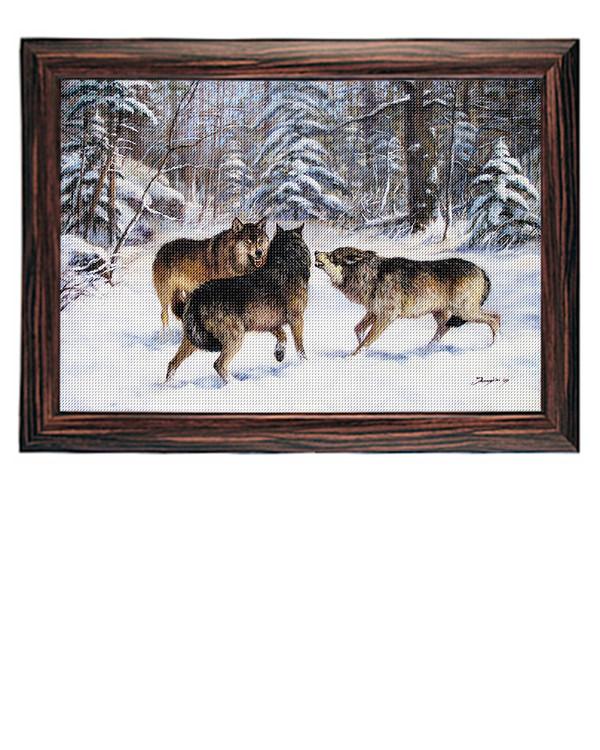 Bilde Ulvekamp