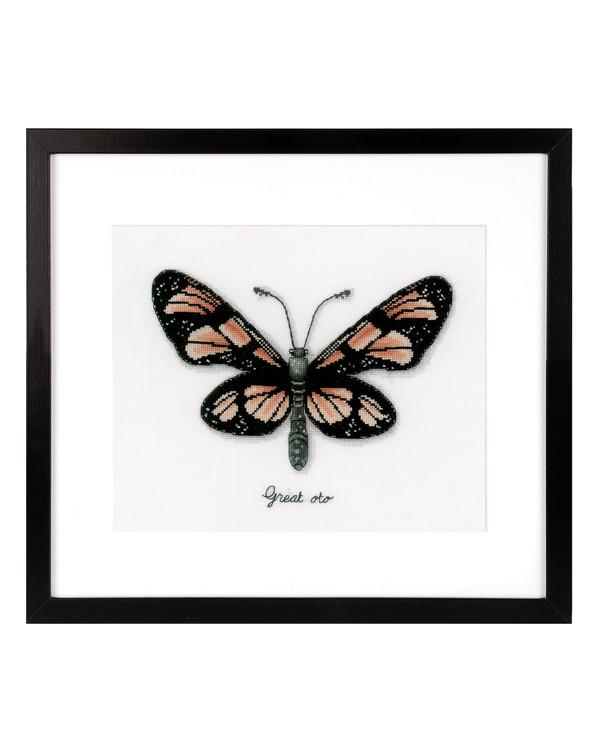 Bild Orangener Schmetterling