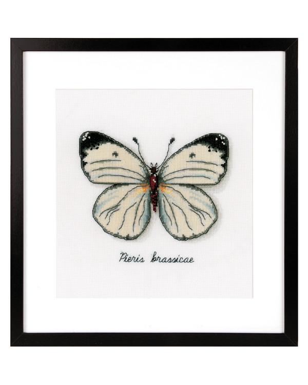 Taulu Valkoinen perhonen