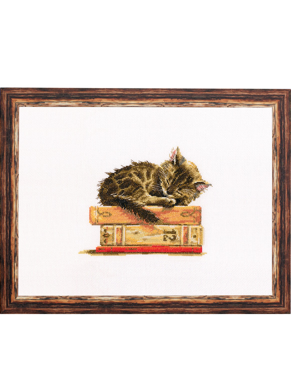 Taulu Nukkuva kissa