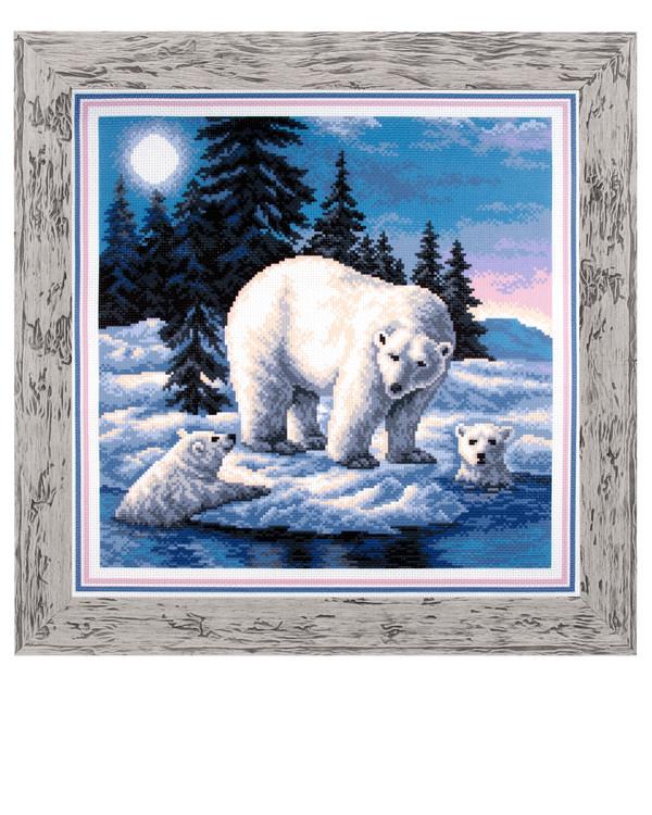 Billede Isbjørne