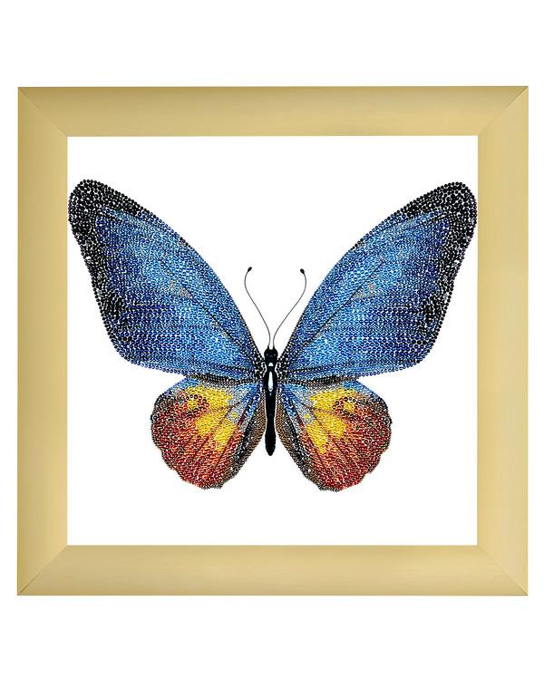 Perlebroderi Vakker sommerfugl
