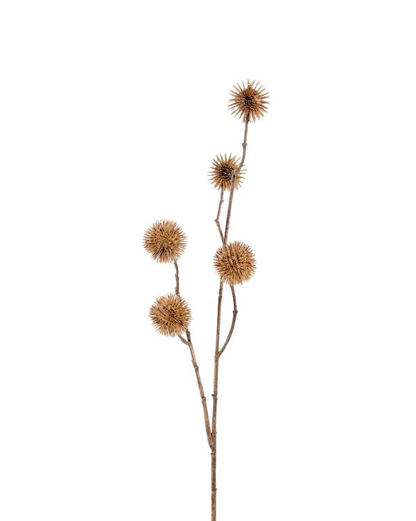 Kunstplante Platan
