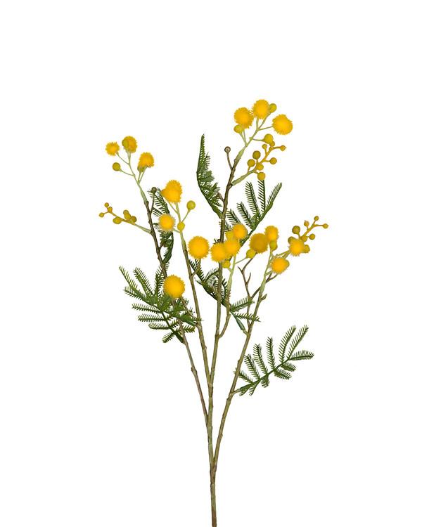 Kunstplante Mimosa