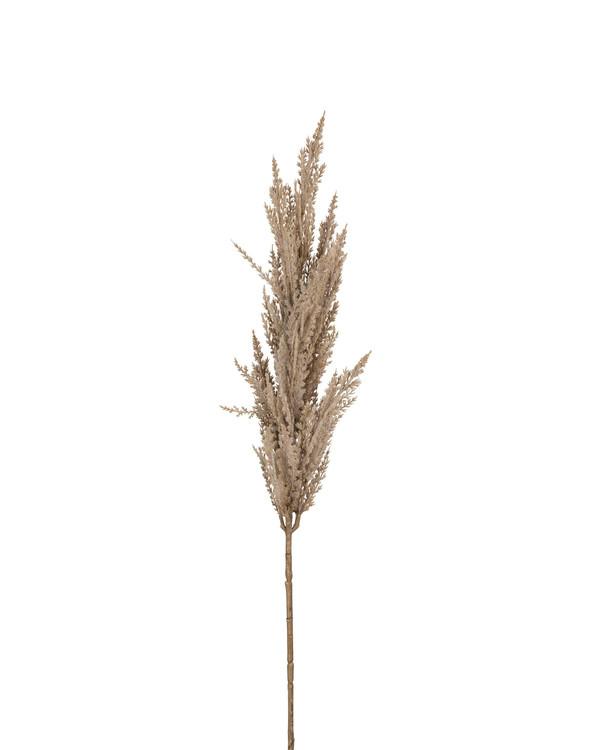 Konstväxt Pampasgräs 90 cm