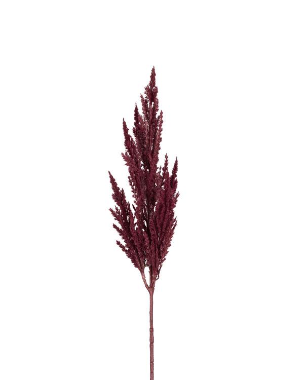 Konstväxt Pampasgräs 80 cm