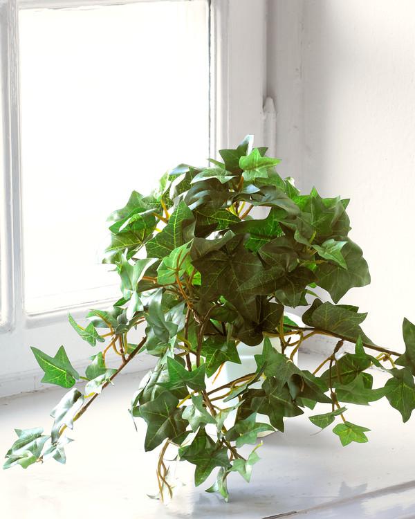 Konstväxt Murgröna 60 cm