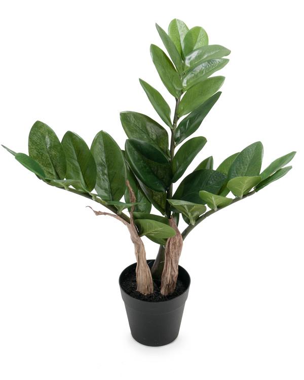 Konstväxt Zamifolia 45 cm