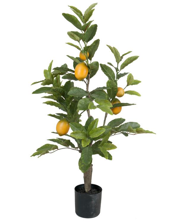 Konstväxt Citron 90 cm