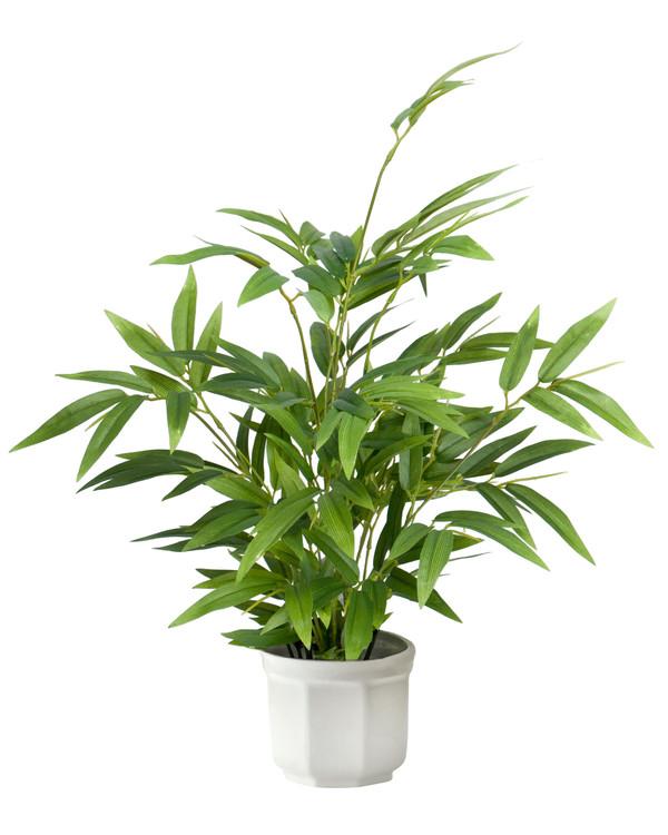 Konstväxt Bambu 45 cm
