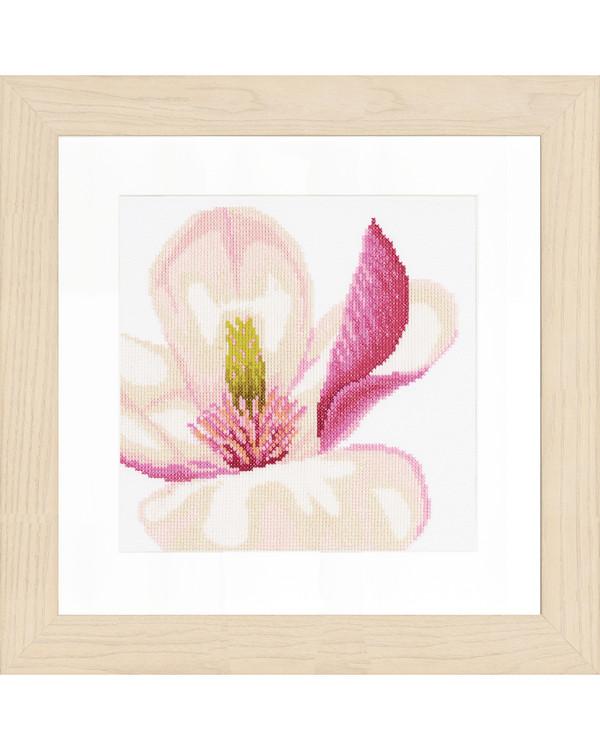 Magnolia flower aida