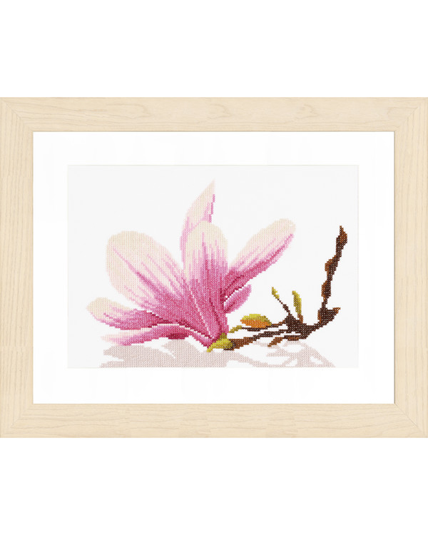 Magnolia twig with flower