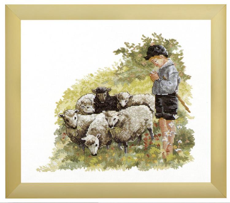 Bild Schafsherde